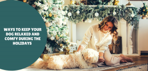 Ways To Keep Your Dog Relaxed and Comfy During The Holidays
